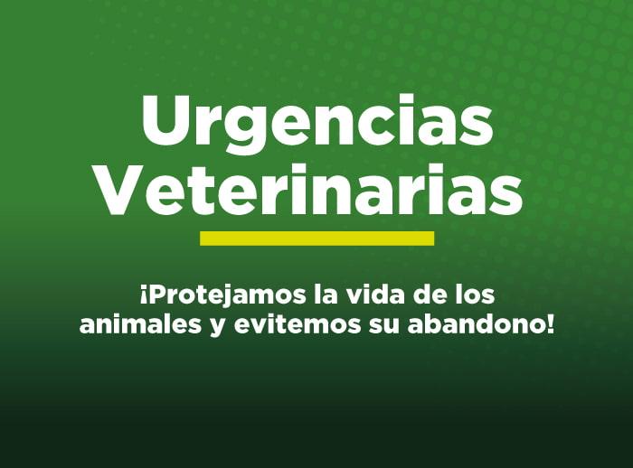 Urgencias veterinaria uniremington