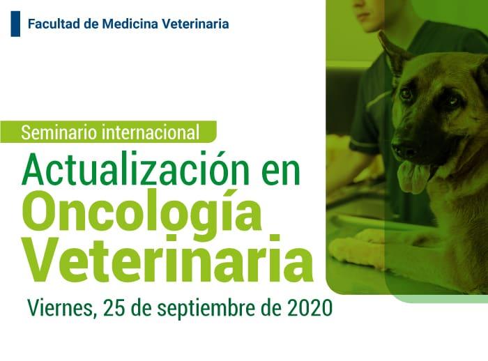 actualizacion en oncologia veterinaria