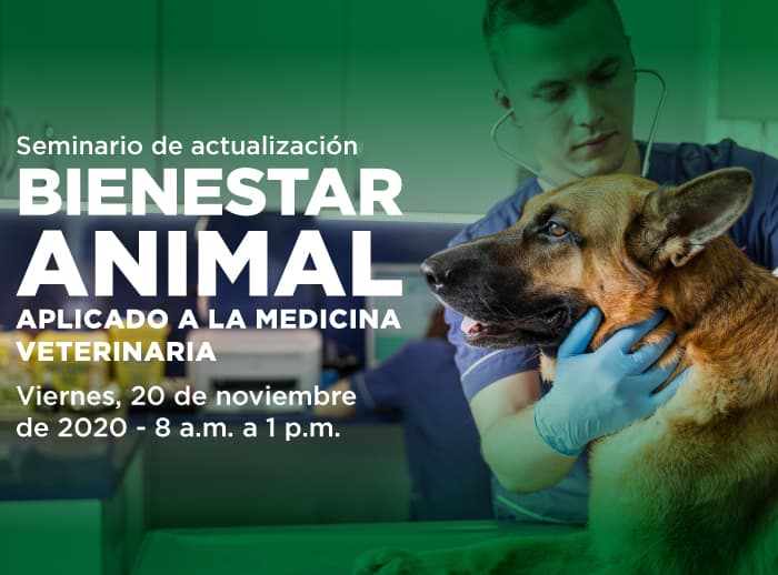 Bienestar-animal-aplicado-a-la-medicina-veterinaria