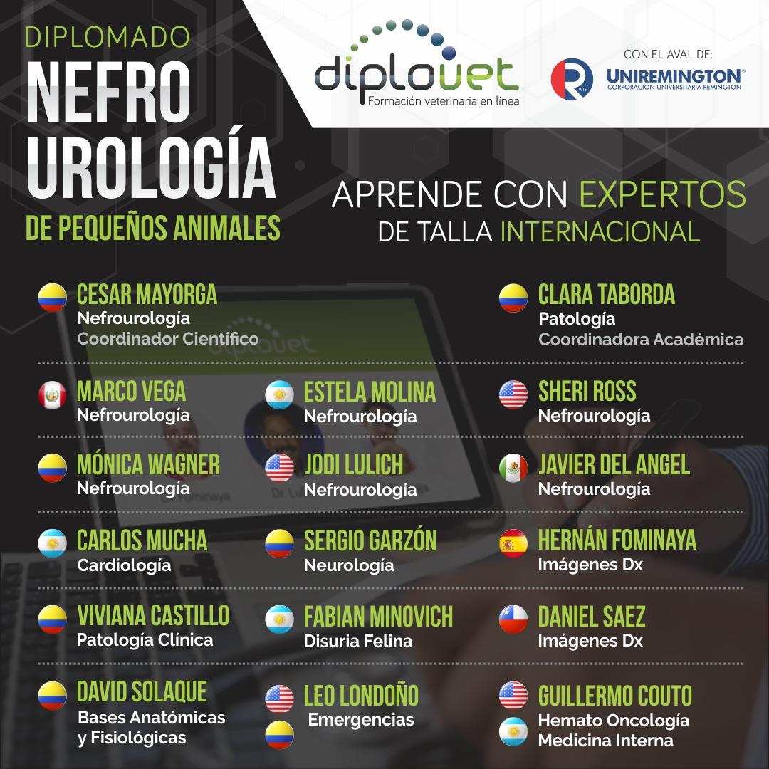 Diplomado Nefrourología