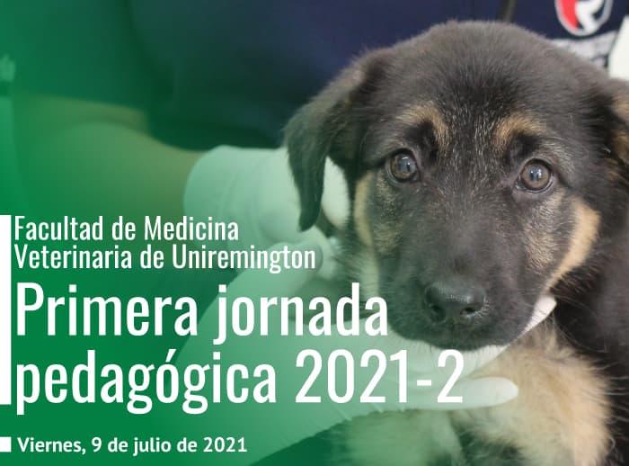 Jornada-pedagógica-de-medicina-veterinaria
