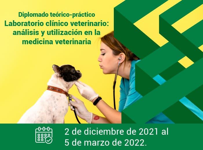 Diplomado Laboratorio clínico veterinario - análisis y utilización en la medicina veterinaria